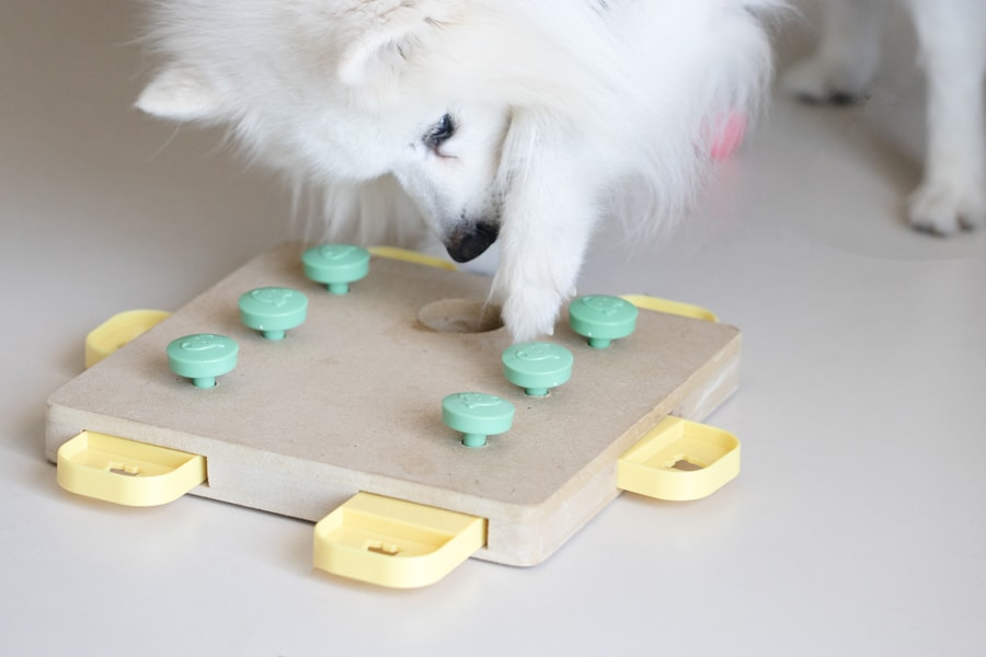 5 Must Have Gadgets for Your Puppy