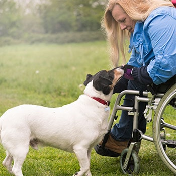 Elderly/Disabled?