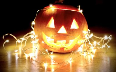 Halloween Decorations Dangerous To Dogs and Cats