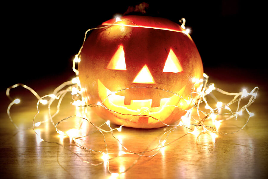 Halloween Decorations Unsafe for Pets