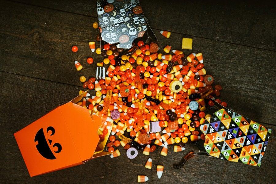 Halloween Treats Pets Should Avoid