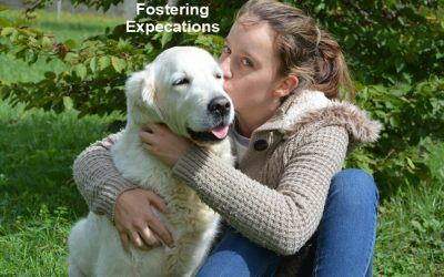 Foster Parent Hugging Dog