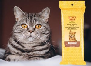 Helpful Pet Item-Cat Wipes