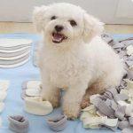 Helpful Pet Item-Snuffle Mat