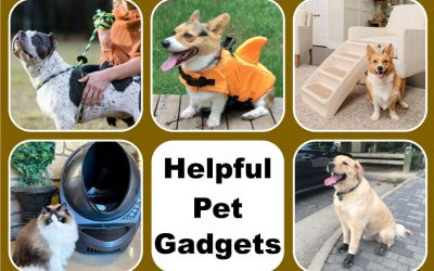 Helpful Pet Gadgets
