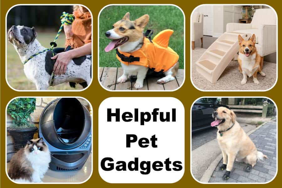 Gadgets Pet Parents Will Love – Part 4