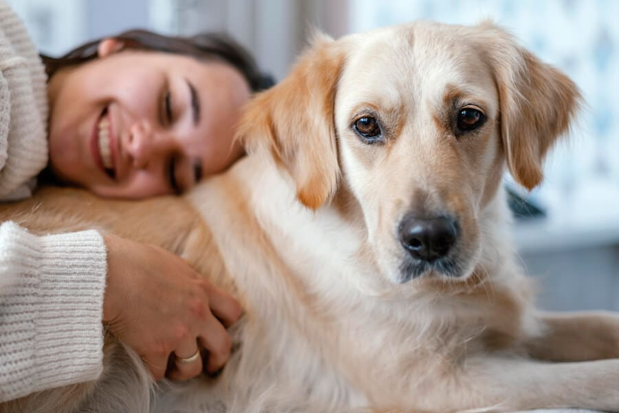 Emotional Support Animals-What You Need to Know